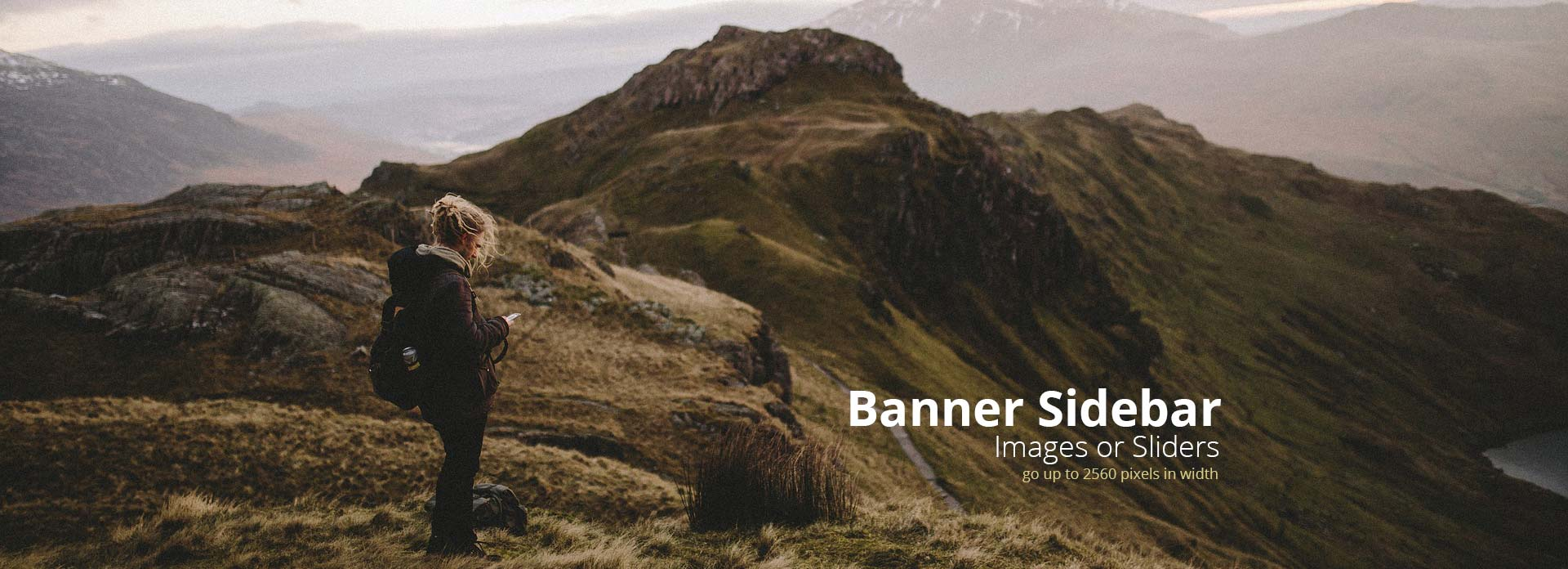 banner sidebar