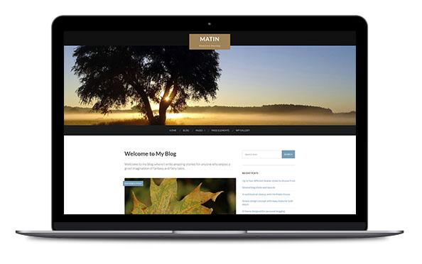 WordPress Theme Matin Pro