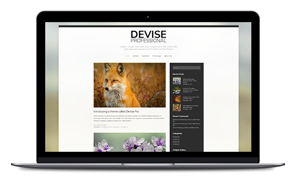 WordPress Theme Devise Pro