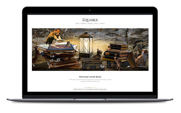 WordPress Theme Equable Pro