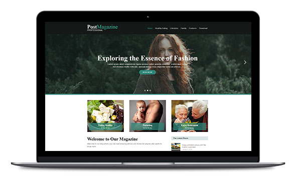 WordPress Theme Post Magazine Pro
