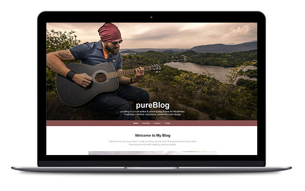 WordPress Theme PureBlog Pro