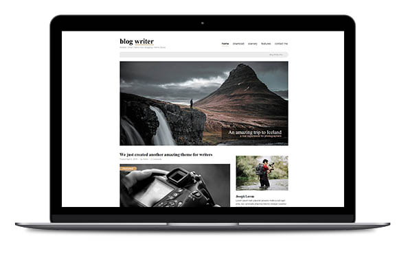 WordPress Theme Blog Writer Pro